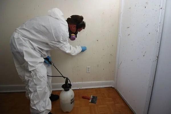 Biohazard cleanup of crime scene